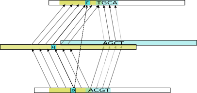 Example transitive alignment constructed from combining the indirect alignments for two intermediate sequences (yellow and blue)